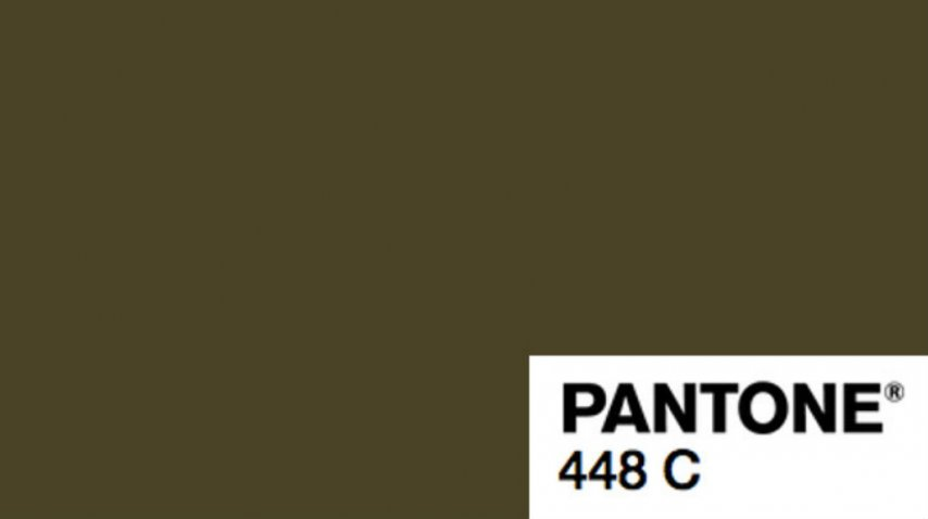 Color pantone 448C