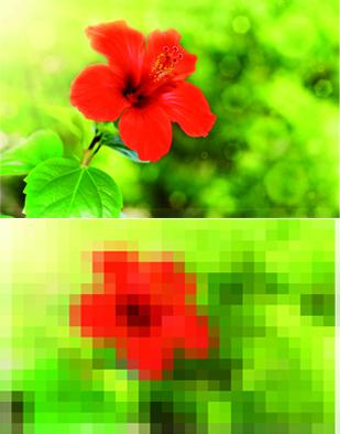 flor_alta_pixel
