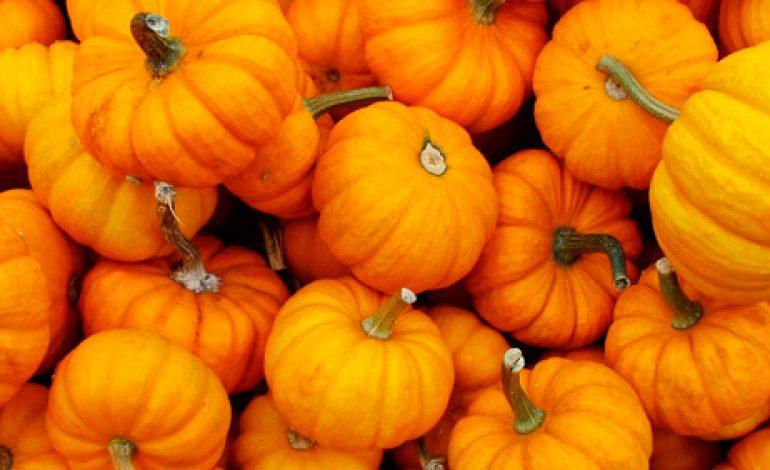 Este año olvida Halloween