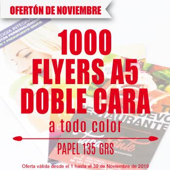 Oferta Especial 1000 Flyers A5 Solo En Noviembre